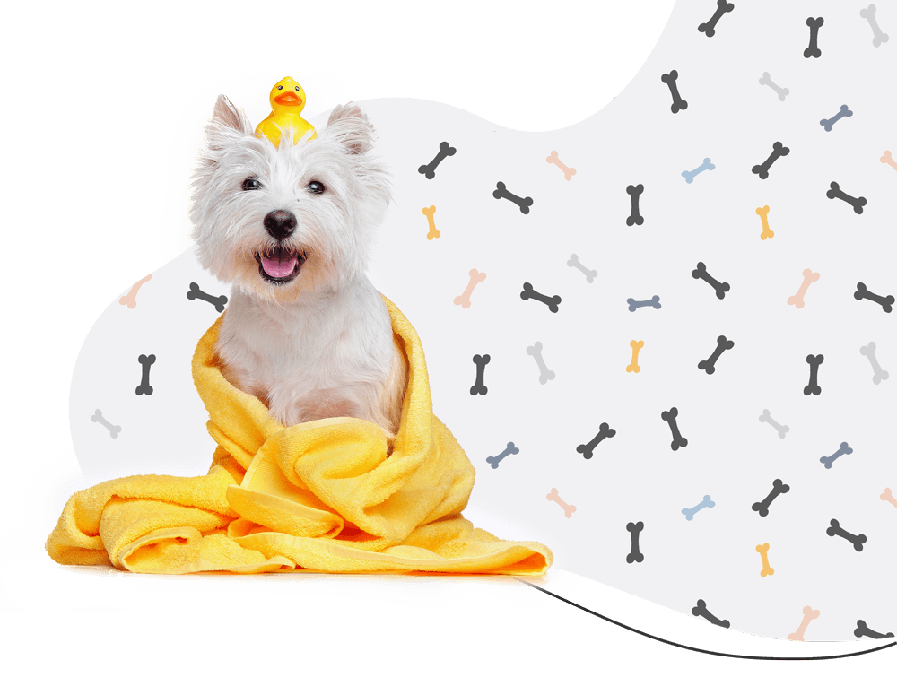 https://denlillehundesalon.dk/wp-content/uploads/2019/08/hero_prices.png